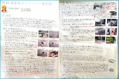神鍋溶岩流でコツブムシ発見!!