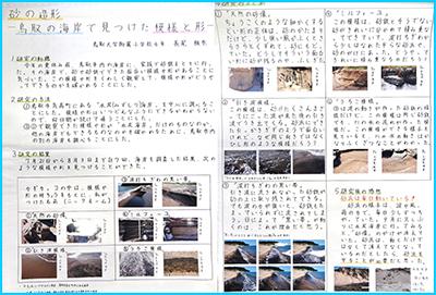 砂の造形-鳥取の海岸で見つけた模様と形-