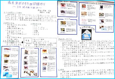 城原海岸の生き物図鑑作り~3年間の取り組み~