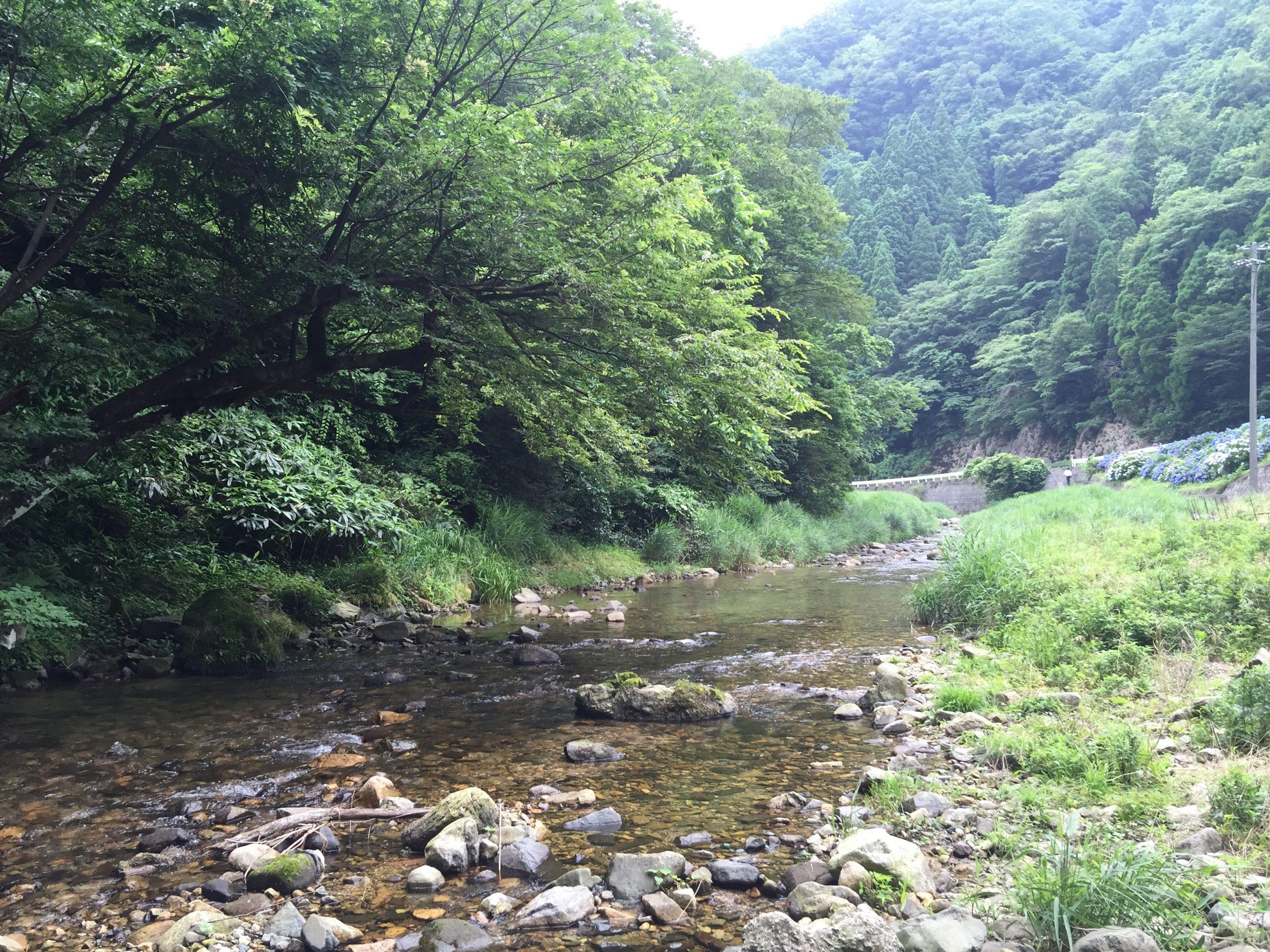 久斗川渓谷周辺