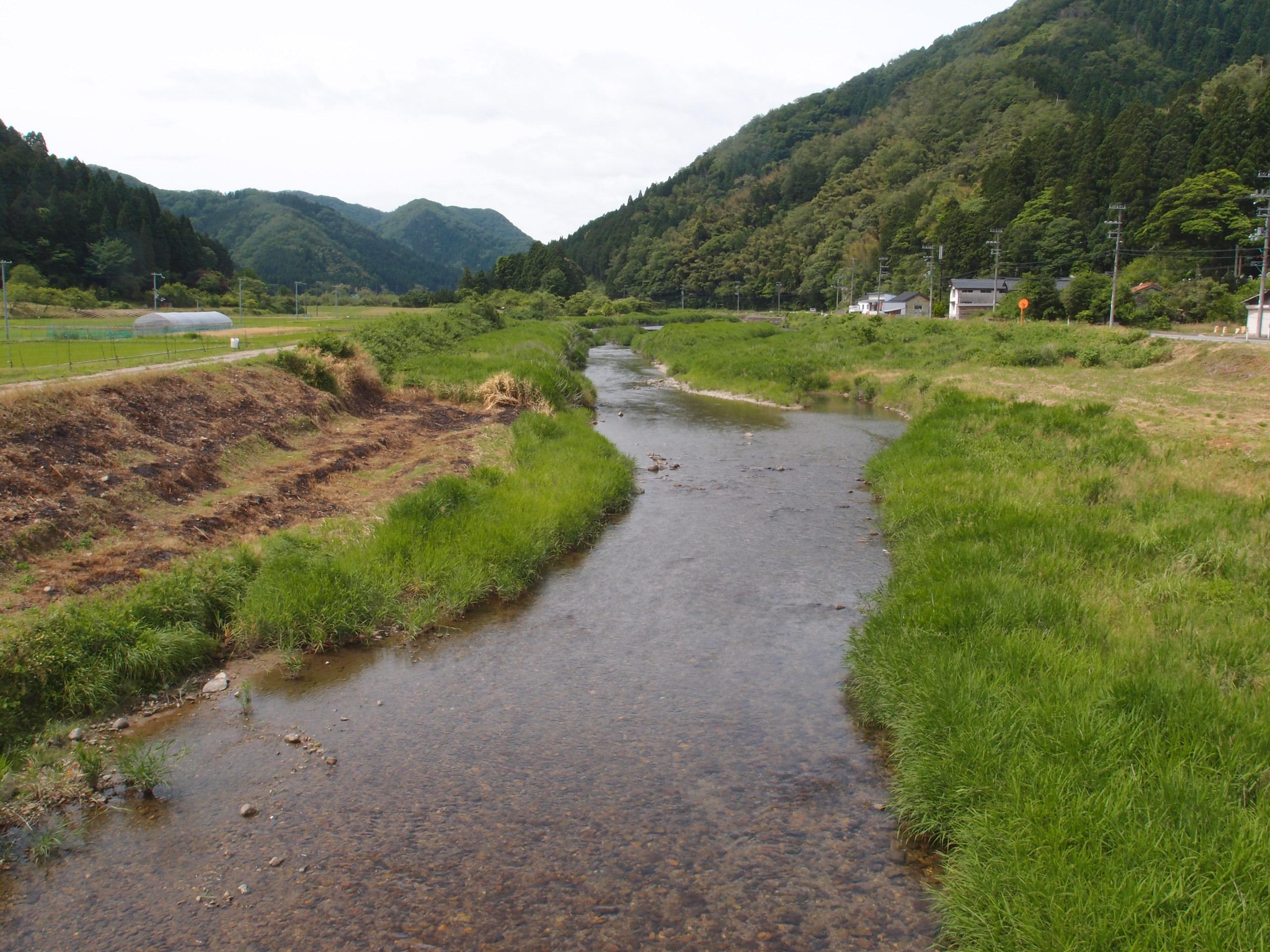 竹野川周辺