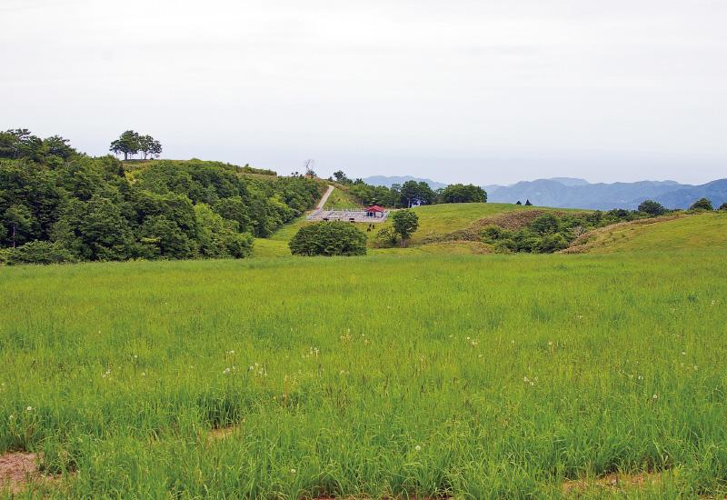 扇ノ山北麓コース