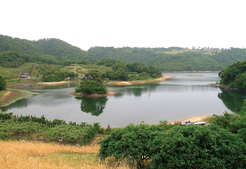 鳥取砂丘西コース