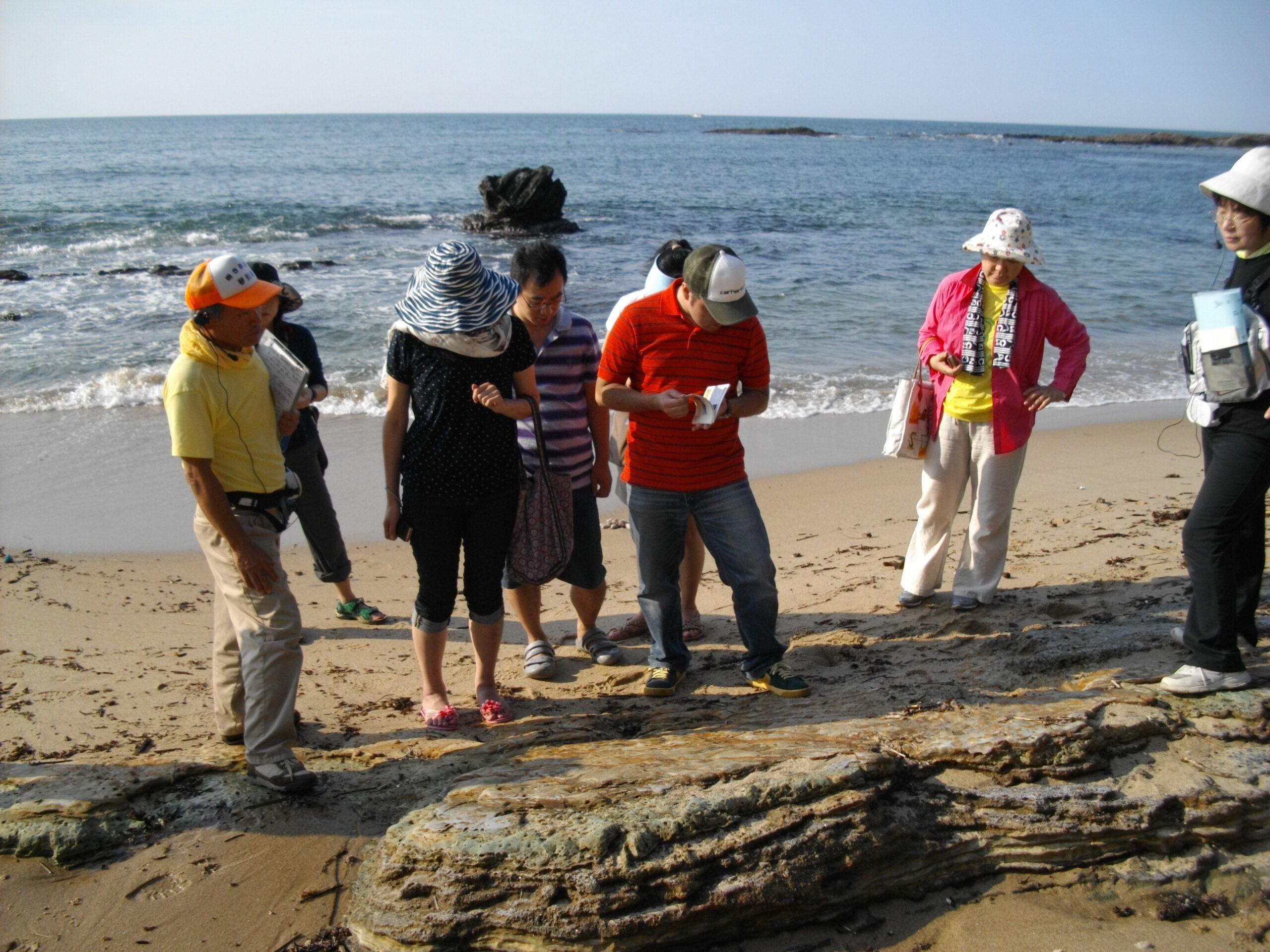 琴引浜ガイド シンクロ