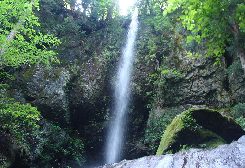 尼崎市立美方高原自然の家