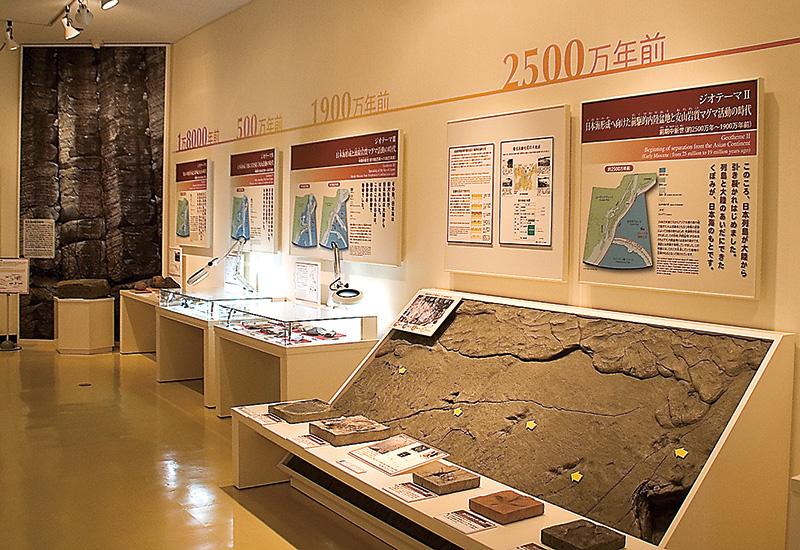 山陰海岸ジオパーク海と大地の自然館