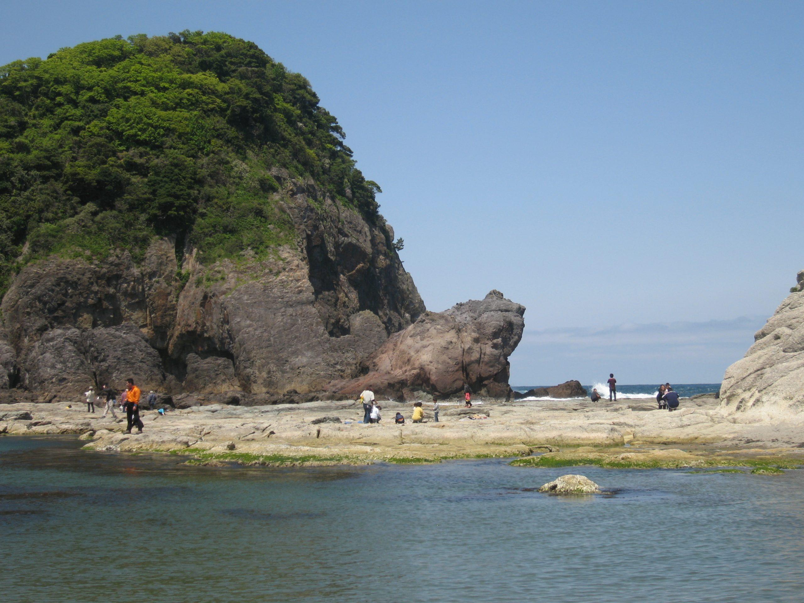 かえる島1