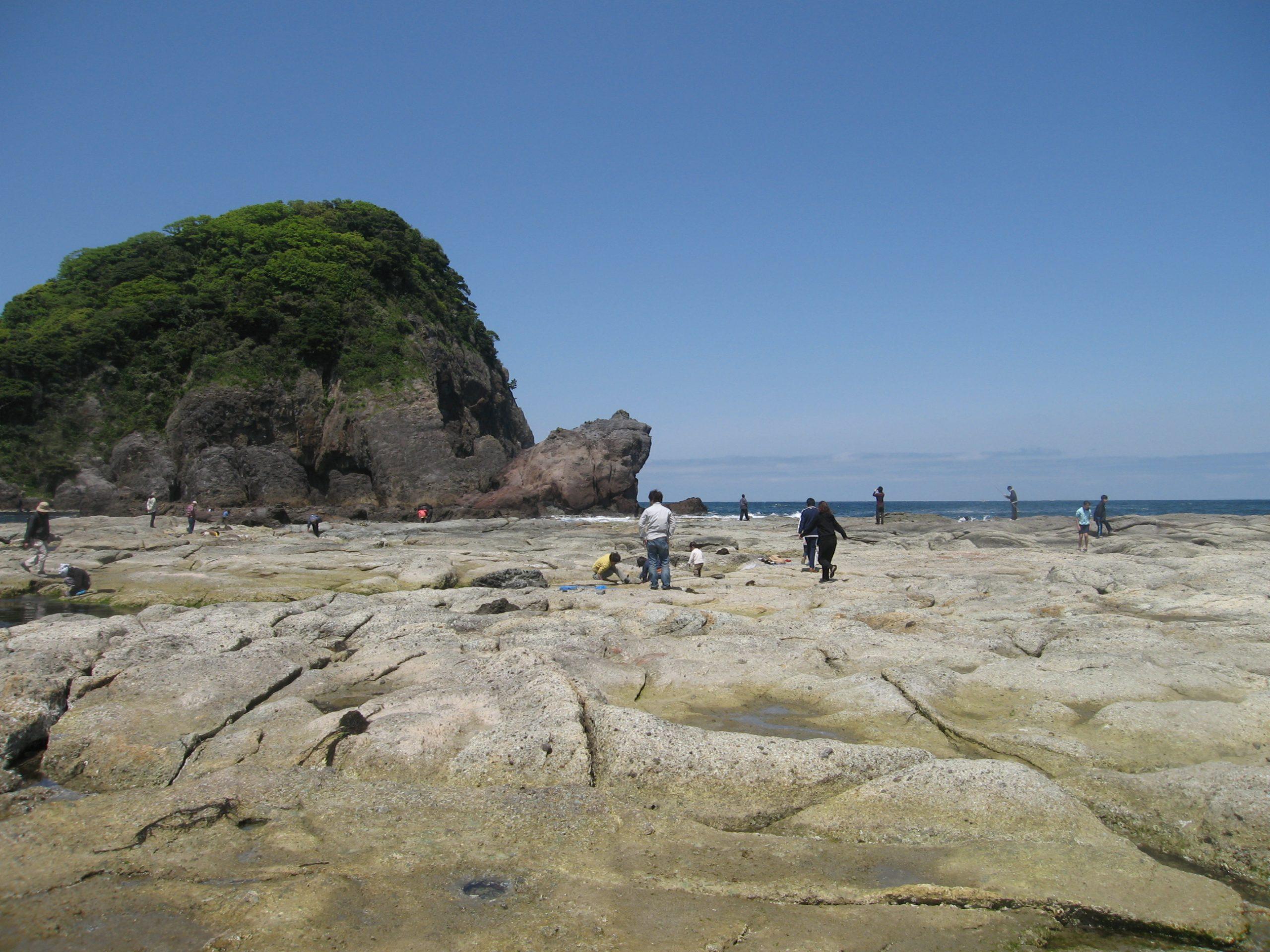 かえる島3