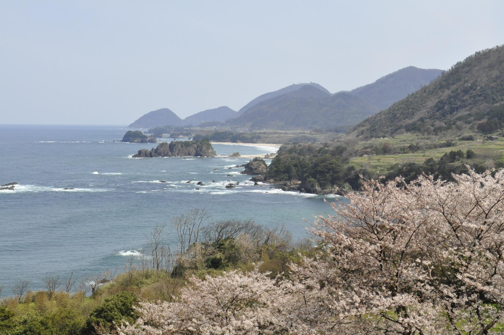 丹後松島(春)