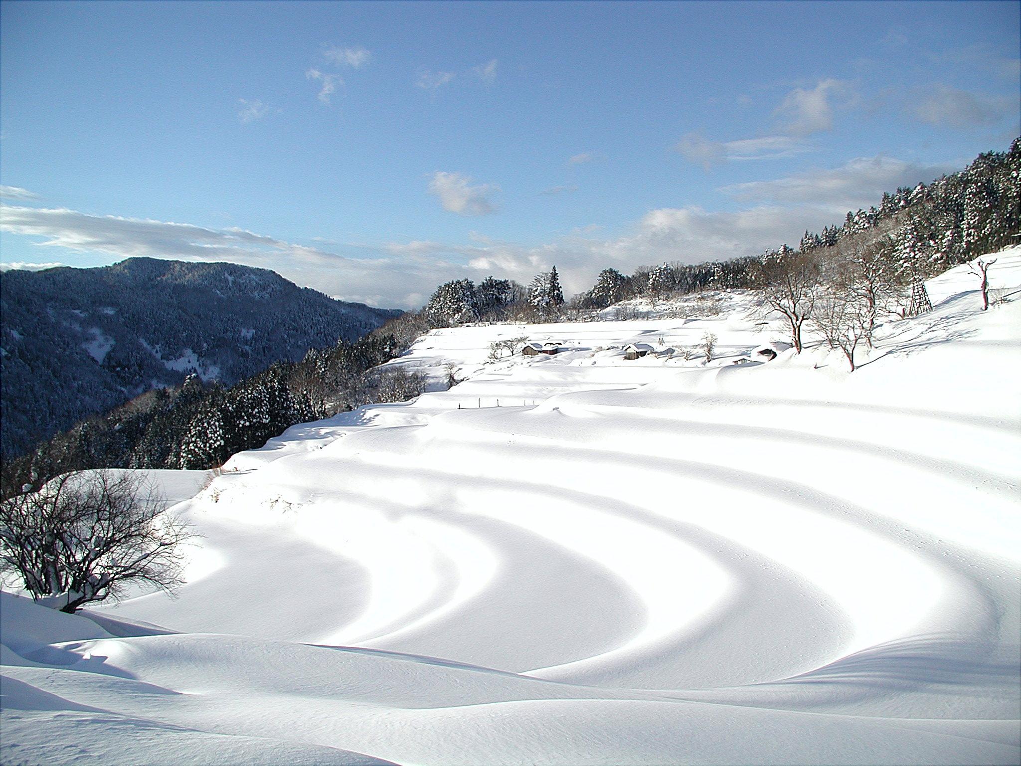 和佐父・西ヶ岡棚田(雪)